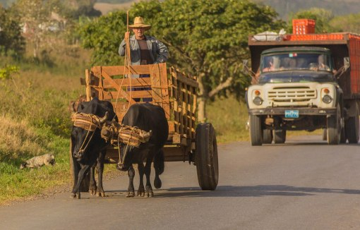 Oxcart 1