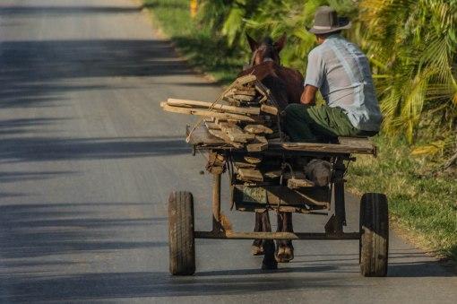 wagon with wood