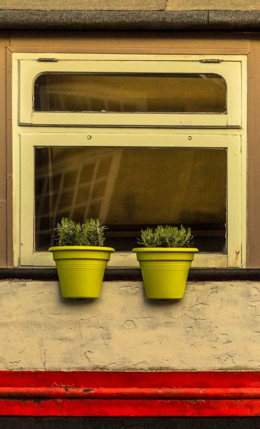 plants on houseboat
