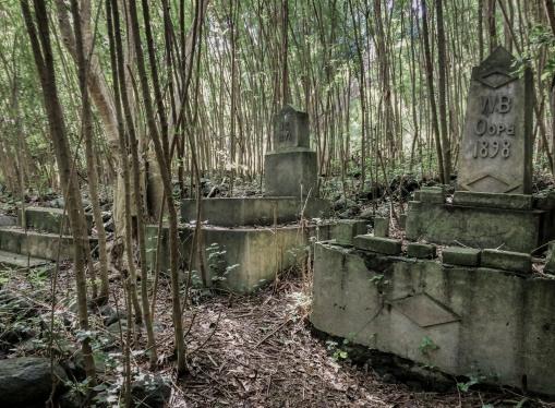 halawa cemetery