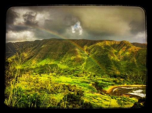 halawa rainbow