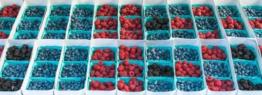 Berry Assortment 2